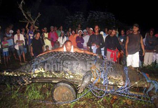 Il-coccodrillo-più-lungo-del-mondo-è-morto-a-causa-dell'inquinamento.jpg